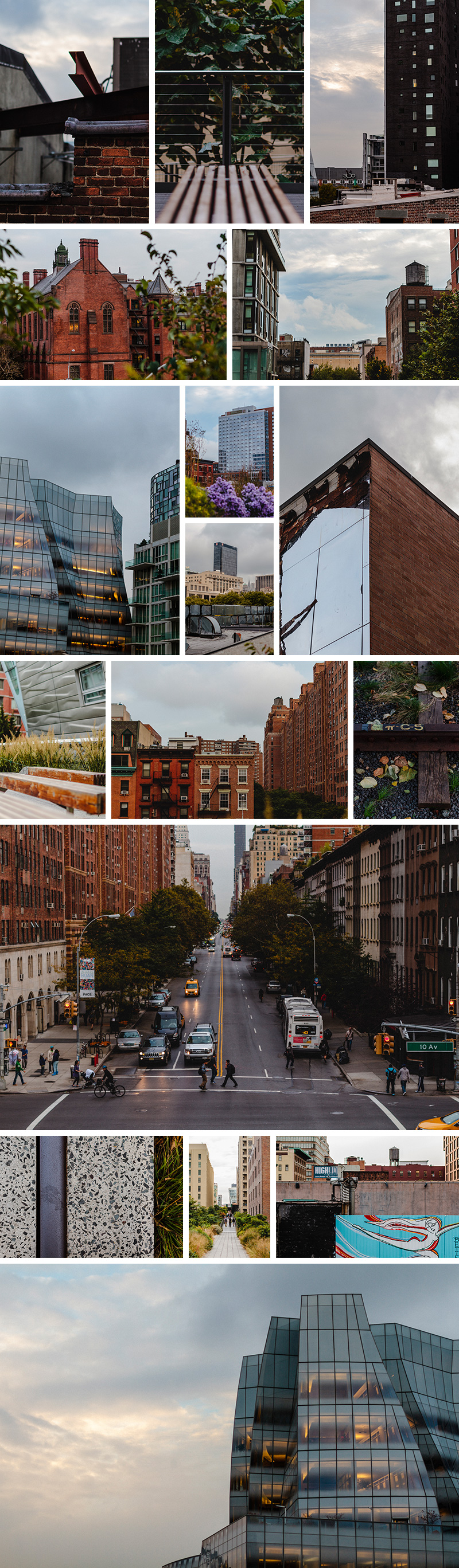 Photographs from The Highline in Manhattan off 10th Avenue